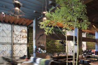coffeshop-Architecture-Stud
