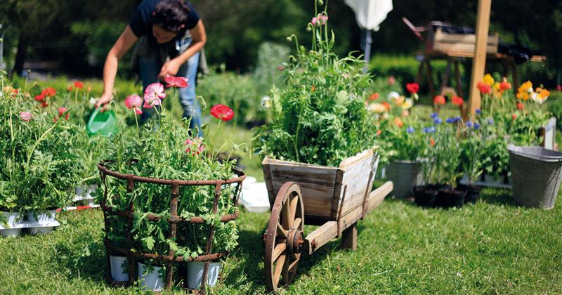 Al via la sesta edizione del festival del verde e del for Piccoli giardini fioriti