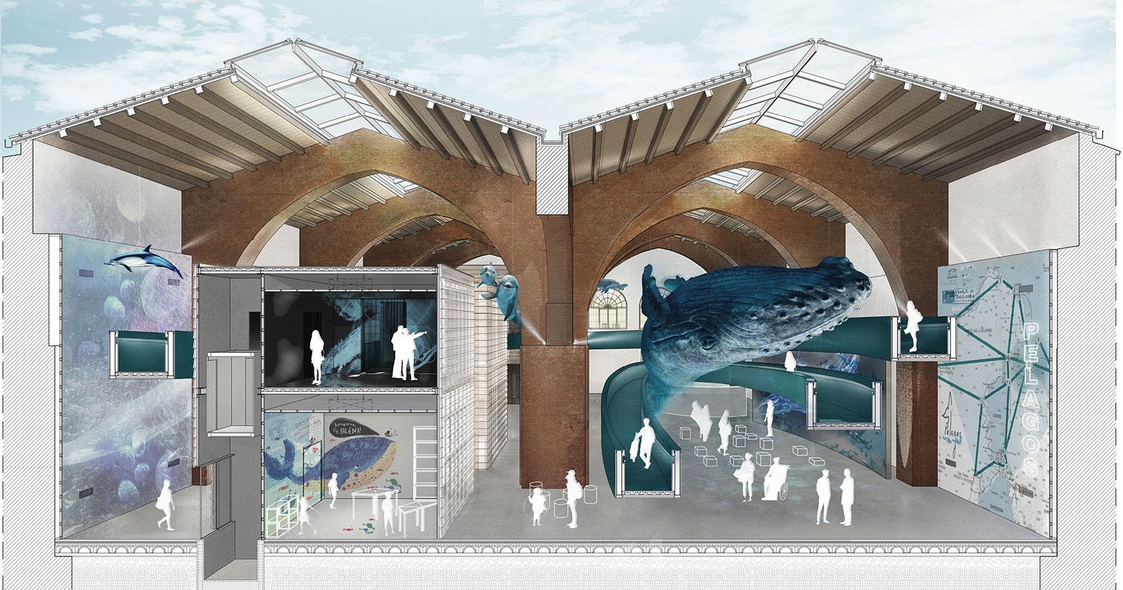 Allestimento ad alto impatto emozionale: le ex Galeazze a Portoferraio rinascono con il centro grandi cetacei