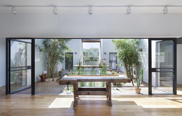 Patio House: simbiosi perfetta tra natura e architettura
